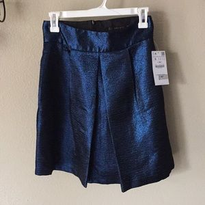 Zara NWT  pleated metallic blue skirt size S
